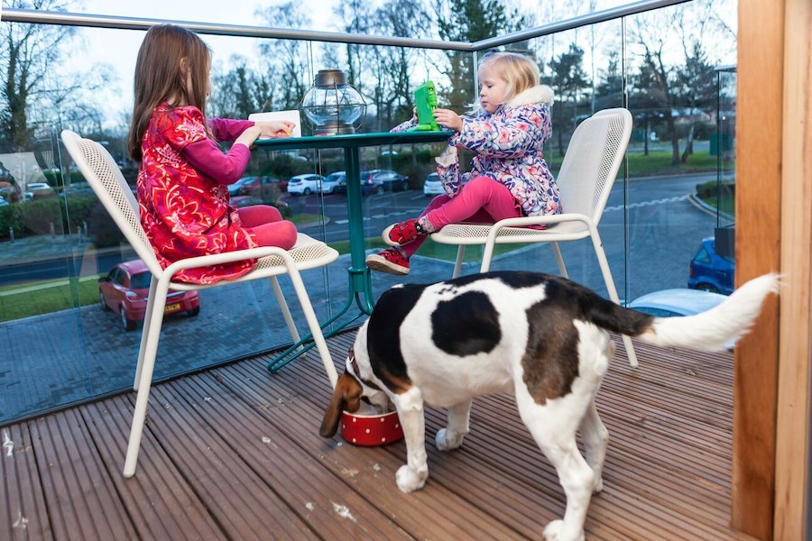 Lodge at Solent - kids and dog